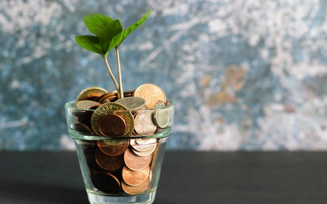 Pay Structures: What are they, what are the options for my organisation and… does pay really motivate?